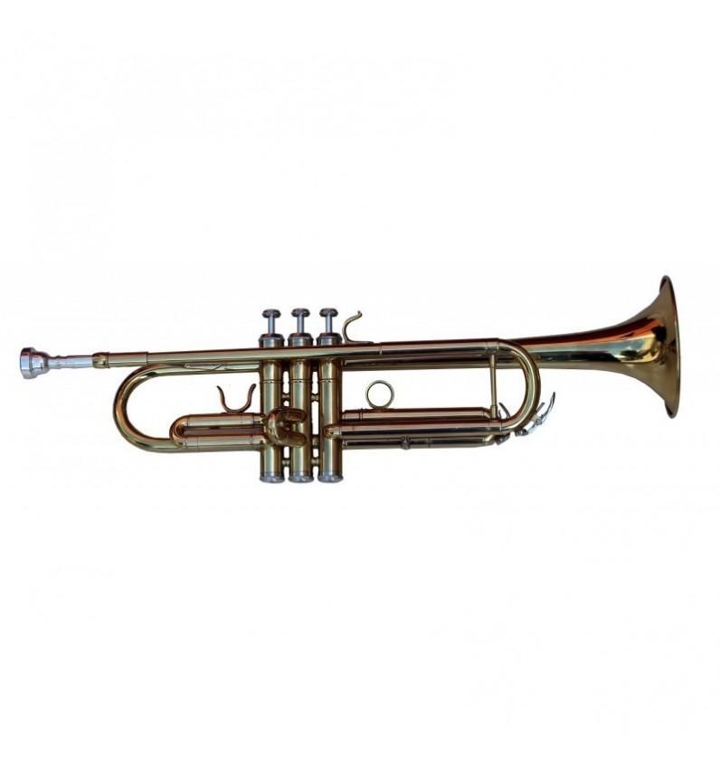 Trompeta Alexander Gotye